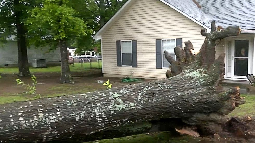 Storm's toll in CSRA: Downed trees, wrecks and delayed baseball.  What's next?  - WRDW-TV