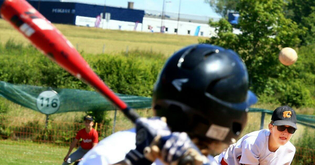 Baseball / National The Cometz will have the title of champion of France 15U