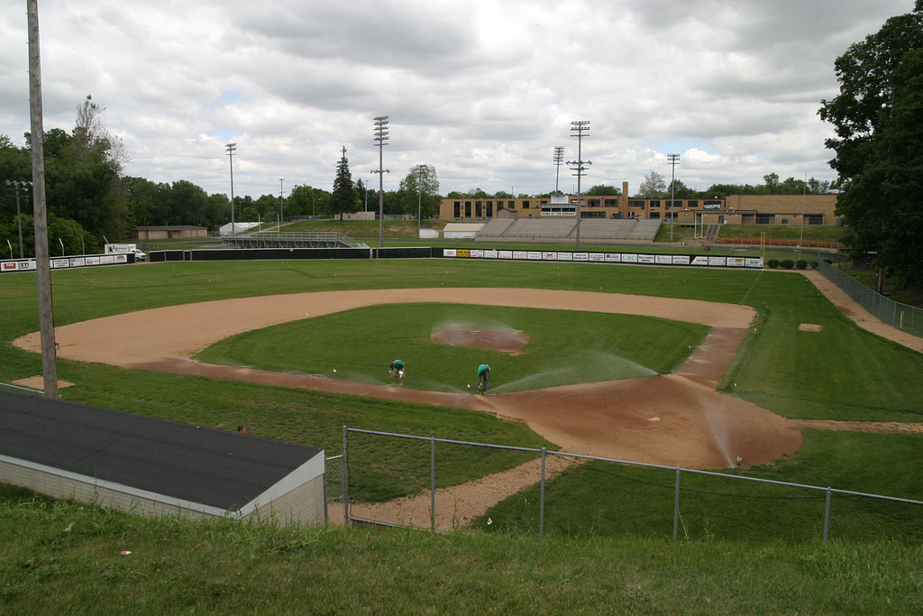 Tecumseh 1981 varsity baseball team seeks to change field name after late player - News - Bedford Now - Bedford Township, Michigan